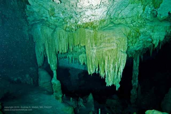 Gallery 11 – Cancun Cenotes 2011